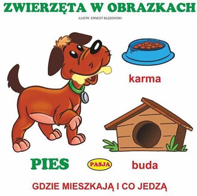 Zwierzęta w obrazkach - 222466